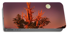 Full Moon Behind Ancient Bristlecone Pine White Mountains California Portable Battery Charger