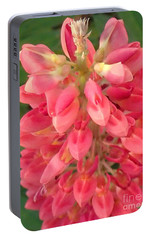 Portable Battery Charger featuring the photograph Full Of Heart by Christina Verdgeline
