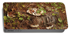 Portable Battery Charger featuring the photograph Fungi And Needles And Tree Trunk  Oh My by Carol Lynn Coronios