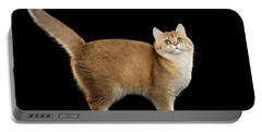 Funny British Cat Golden Color Of Fur Portable Battery Charger