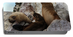 Fur Seals On The Ballestas Islands, Peru Portable Battery Charger by Aidan Moran
