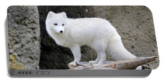 Furry Arctic Fox  Portable Battery Charger by Athena Mckinzie