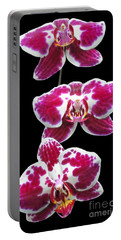 Portable Battery Charger featuring the photograph Fuschia Orchid Triplets by Sue Melvin