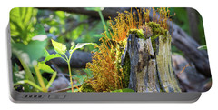 Portable Battery Charger featuring the photograph Fuzzy Stump by Bill Pevlor
