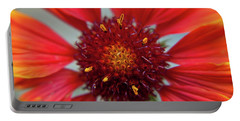 Portable Battery Charger featuring the photograph Gaillardia by Brenda Jacobs