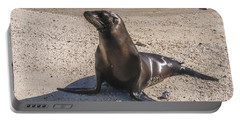 Galapagos Sea Lion Portable Battery Charger