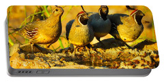 Gambel's Quail Foursome Portable Battery Charger