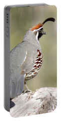 Gambel's Quail Portable Battery Charger