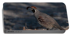 Gambel's Quail Portable Battery Charger by Martina Thompson