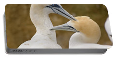 Portable Battery Charger featuring the photograph Gannet Pair 1 by Werner Padarin