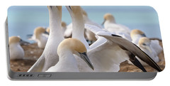 Portable Battery Charger featuring the photograph Gannets by Werner Padarin