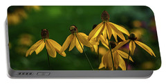 Garden Dancers Portable Battery Charger by Don Spenner