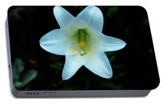 Portable Battery Charger featuring the photograph Garden Lily by Tom Singleton