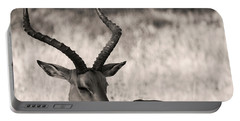 Gazella Portable Battery Charger