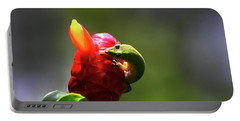 Portable Battery Charger featuring the photograph Gecko #2 by Anthony Jones