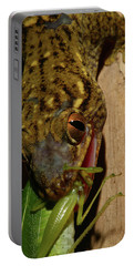 Gecko Feed Portable Battery Charger