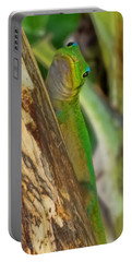 Gecko Up Close Portable Battery Charger