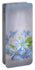 Gentle Blues Portable Battery Charger