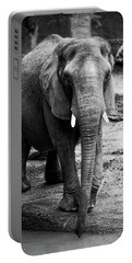 Portable Battery Charger featuring the photograph Gentle One by Karol Livote