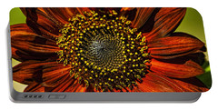 Gerber Daisy Full On Portable Battery Charger