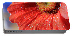 Gerbera Daisy After The Rain Portable Battery Charger