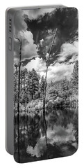 Portable Battery Charger featuring the photograph Getaway by Rick Furmanek