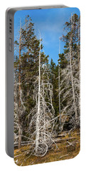 Portable Battery Charger featuring the photograph Ghost Pines At Yellowstone National Park by Lon Dittrick