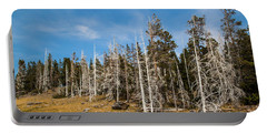 Portable Battery Charger featuring the photograph Ghost Trees At Yellowstone by Lon Dittrick