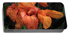 Portable Battery Charger featuring the photograph Giant Canna by Suzanne Stout