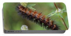 Giant Leopard Moth Caterpillar Portable Battery Charger