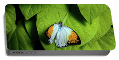 Portable Battery Charger featuring the photograph Giant Orange Tip Butterfly by Tom Mc Nemar