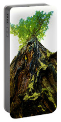 Giants Of The Earth Portable Battery Charger