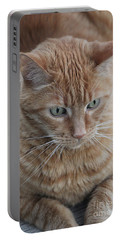 Ginger Cat Portable Battery Charger