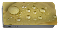 Ginkgo Balls Portable Battery Charger