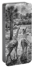 Portable Battery Charger featuring the photograph Giraffe Reticulated by Howard Salmon