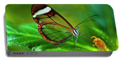 Portable Battery Charger featuring the photograph Glasswinged Butterfly by Ralph A Ledergerber