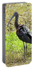 Glossy Ibis Portable Battery Charger