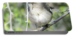 Portable Battery Charger featuring the photograph Northern Mockingbird by Tam Ryan