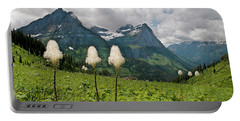 Glacier Beargrass Portable Battery Charger