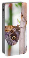 Portable Battery Charger featuring the photograph Gold And Brown Butterfly by Raphael Lopez