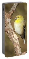 Gold Finch Portable Battery Charger