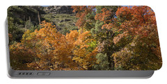 Portable Battery Charger featuring the photograph Gold In The Mountains by Melany Sarafis