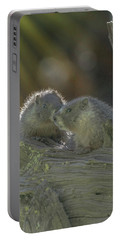 Golden Bellied Marmot Portable Battery Charger