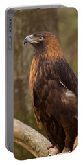 Golden Eagle Resting On A Branch Portable Battery Charger by Chris Flees
