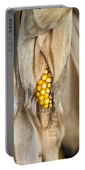 Golden Harvest Portable Battery Charger