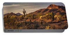 Portable Battery Charger featuring the photograph Golden Hour On The Usery  by Saija Lehtonen