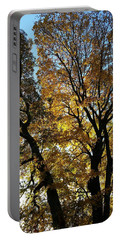 Golden Fall Portable Battery Charger