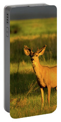 Golden Light Buck II Portable Battery Charger