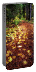 Portable Battery Charger featuring the photograph Golden Path by Cat Connor