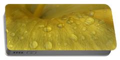 Golden Rain Drops  Portable Battery Charger